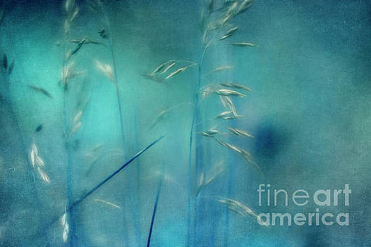 Whispering Grass 1 by Priska Wettstein