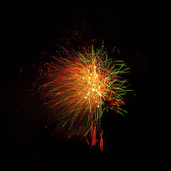 Whistleblower Fireworks on Black by Bonnie Follett