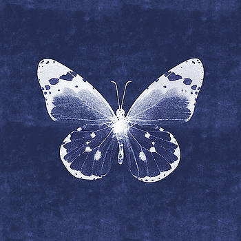 White and Indigo Butterfly 1- Art by Linda Woods by Linda Woods