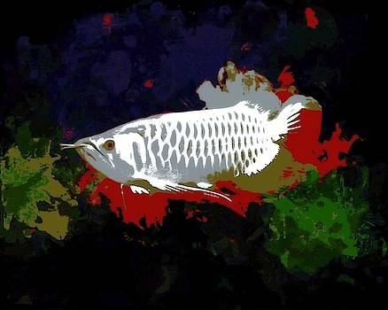 White And Red Arowana Abstract Portrait by Scott Wallace Digital Designs