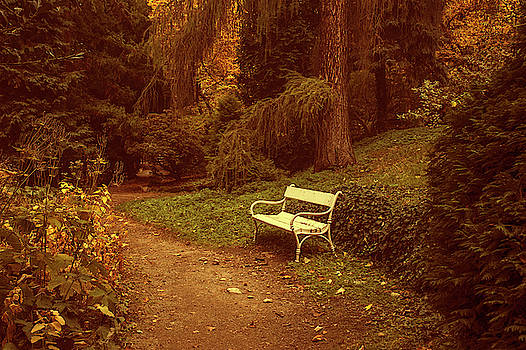 Jenny Rainbow - White Bench in Secret Garden 1