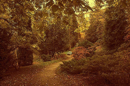 Jenny Rainbow - White Bench in Secret Garden