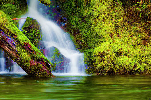 White Cascade Into The Salmon river by Dee Browning