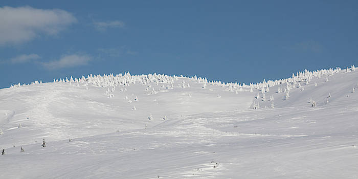White hills covered by snow by Tatiana Travelways