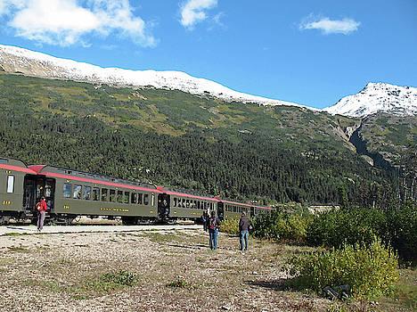White Pass Scenic Railway. Yukon Canada by Connie Fox