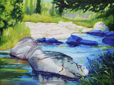 White river Backwater by Pam Little