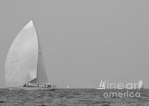 White sailboats on the Mediterranean Sea by Tom Vandenhende