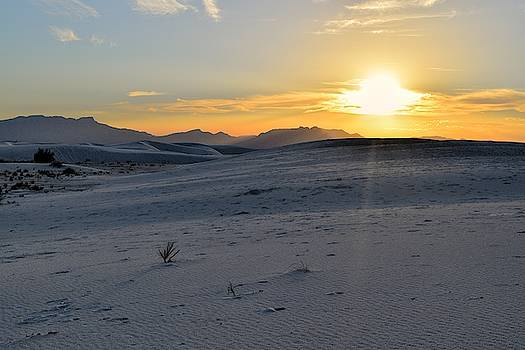White Sands, New Mexico Sun by Chance Kafka