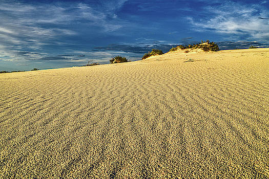 White Sands Sand Dunes, New Mexico  by Chance Kafka