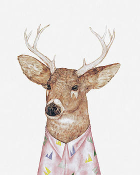 White-Tailed Deer by Animal Crew