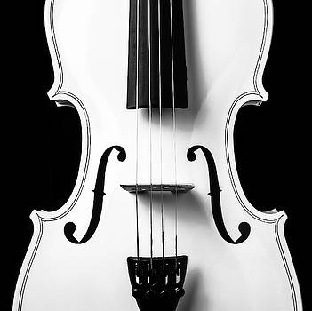 White Violin Close Up by Garry Gay