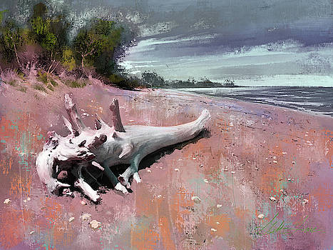 White Whale at Windpoint by Garth Glazier