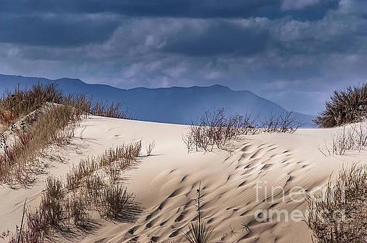 Whites Sands National Monument #2 by Blake Webster