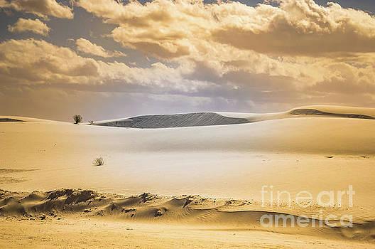 Whites Sands National Monument by Blake Webster