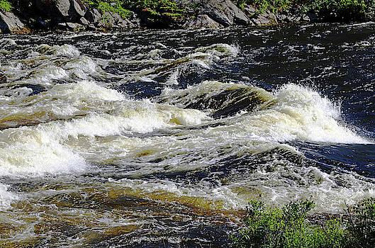 Whitewater Rapids II by Debbie Oppermann