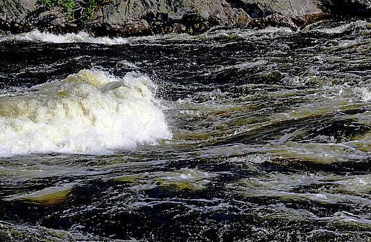 Whitewater Rapids III by Debbie Oppermann