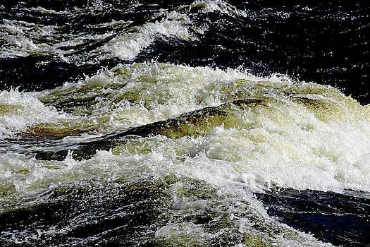 Whitewater Rapids V by Debbie Oppermann