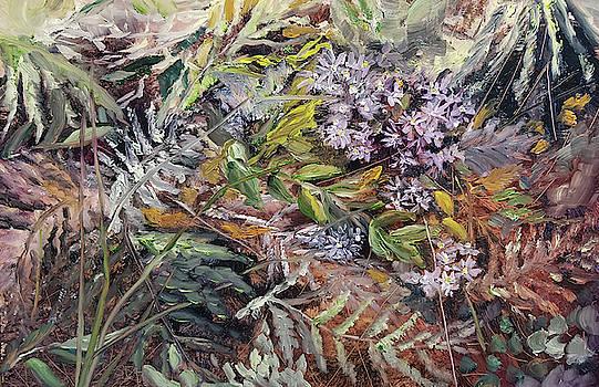 Wild Aster by Susan E Hanna