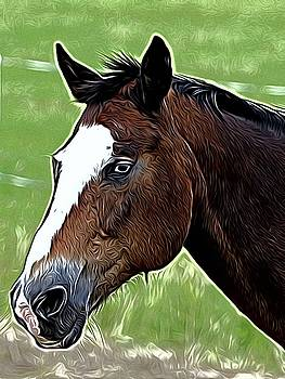 Wild Horse Portrait by Karl-Heinz Luepke