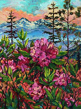 Wild Rhodies by Rebecca Baldwin