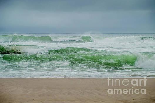 Wild Waves by Judy Hall-Folde