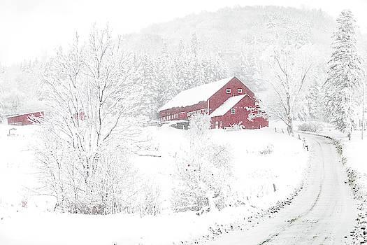 Wilder Farm in Snowstorm by Tim Kirchoff