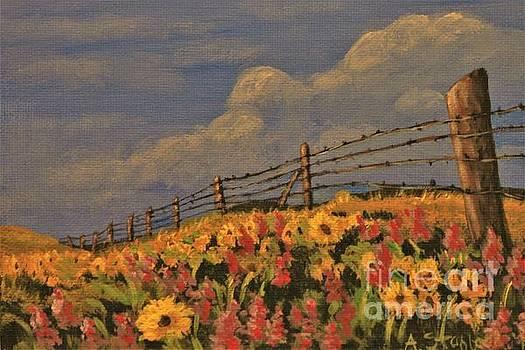 Wildflowers by Angela Stafford