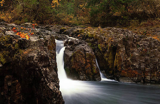 Wildwood Falls Oregon 2 by Lara Ellis