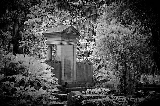 WillCox Grave by Jon Glaser