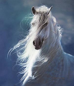 Wind Dancer by Lesley Harrison