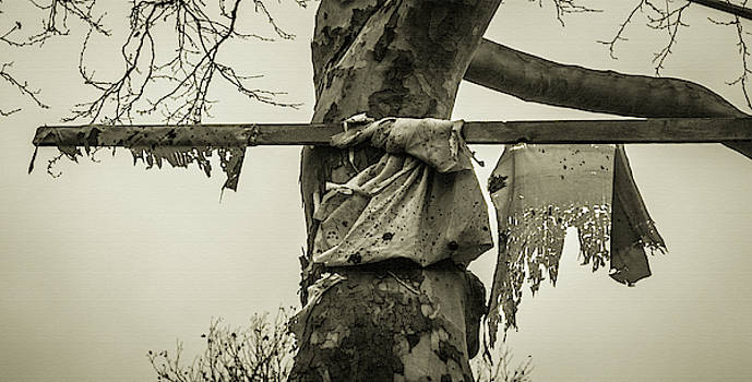 Wind by Traci Asaurus