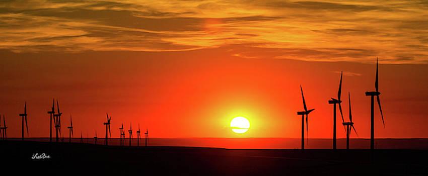 Wind Turbines at Sunset by Linda Burek