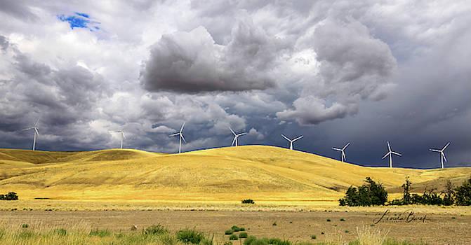 Wind Turbines under Dramatic Sky by Linda Burek