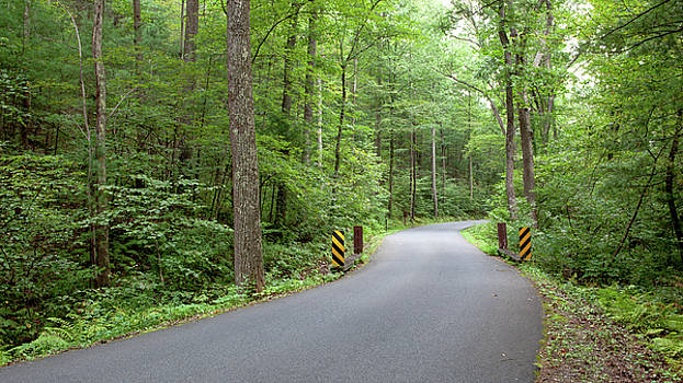 Winding Road by John Daly