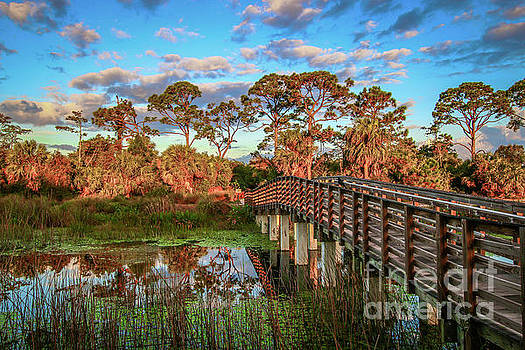 Tom Claud - Winding Waters Boardwalk
