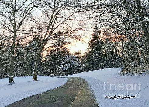 Tami Quigley - Winding Wintry Sunset