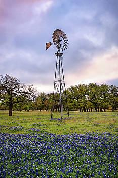 Windmill and Bluebonnets by Harriet Feagin