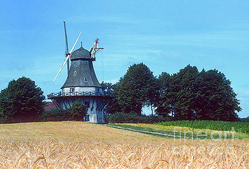 Bob Phillips - Windmill in Grain Field