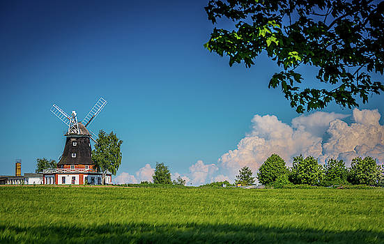 Windmill in spring behind a grain field by Karsten Eggert