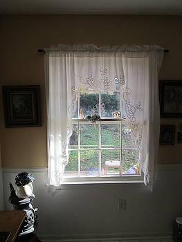Window by Bill OConnor