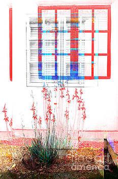Windows to the Soul by Katherine Erickson