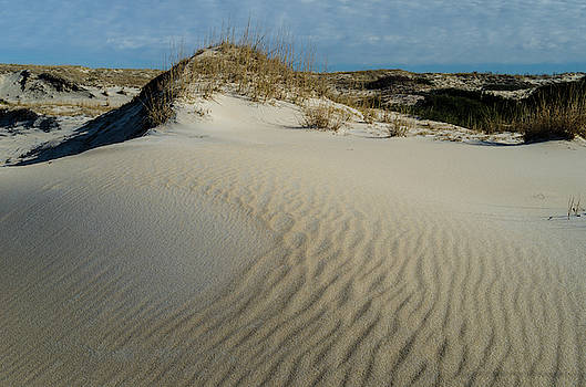 Windswept Dunes by Mike O'Shell
