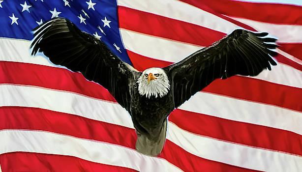Wings Across America by Kathy Gail