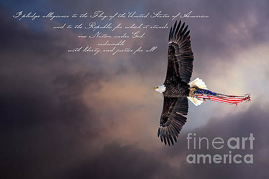 Wings of Freedom - Pledge by Scott Thorp