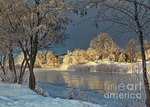 Winnipesaukee River Winter by Mim White