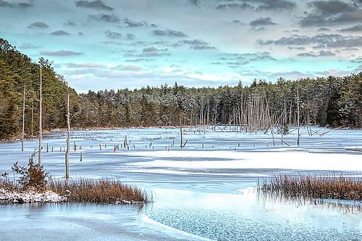 Kristia Adams - Winter At Lake Oswego
