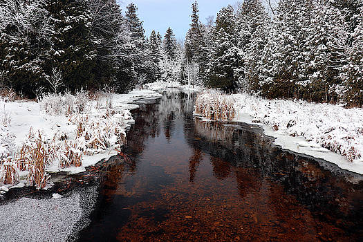 Winter At Reiboldt Creek 2 by David T Wilkinson