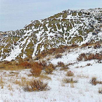Winter Badlands by Cris Fulton