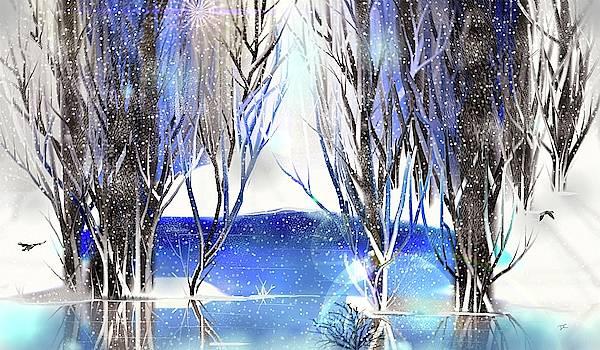 Winter Beauty by Darren Cannell