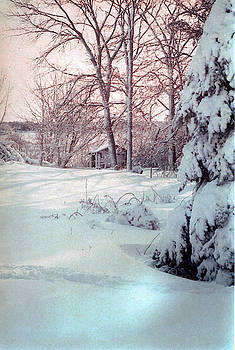 Winter Bliss by Sharon Mayhak